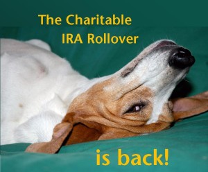 IRA Rollover Is Back